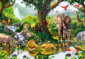 # 92 Gli  Animali  e l'Ecosistema