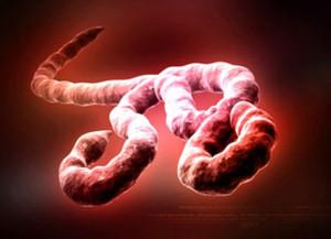 # 112 Virus Emergenti 6°