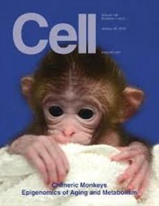 Primati e scienza