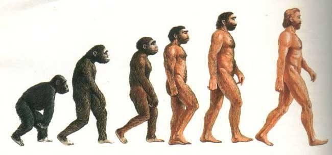 evoluzione-2
