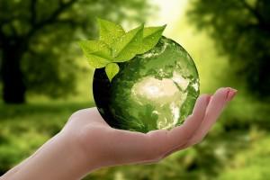 rivoluzione-e-ecologia-prendersi-cura-dellambiente-e-rispettare-la-natura2
